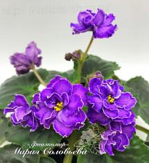 Пурпурный Мираж - 2(К. Морев)
