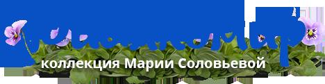 Фиалкомир - коллекция Марии Соловьевой